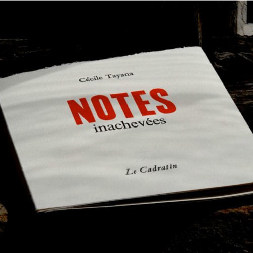 Notes inachevées - Cécile Tayana