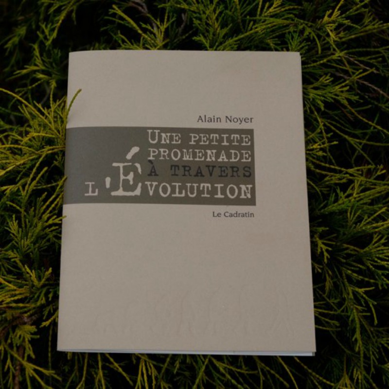 Une Petite Promenade à travers l'évolution - Alain Noyer