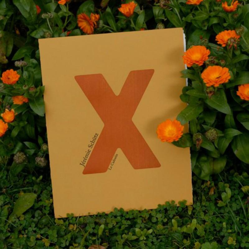 X Prix de poésie 2009 - Jérémie Schütz