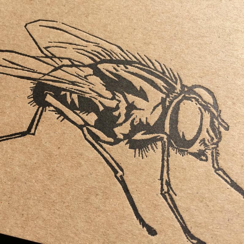 Papier à lettres - bloc A5 la mouche