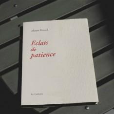 Eclats de patience - Maryse Renard